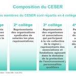 composition_du_ceser1.jpg